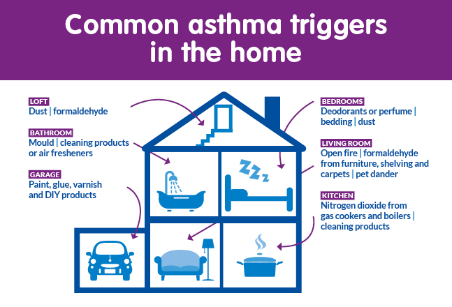 Indoor Asthma Triggers At Home Asthma Uk