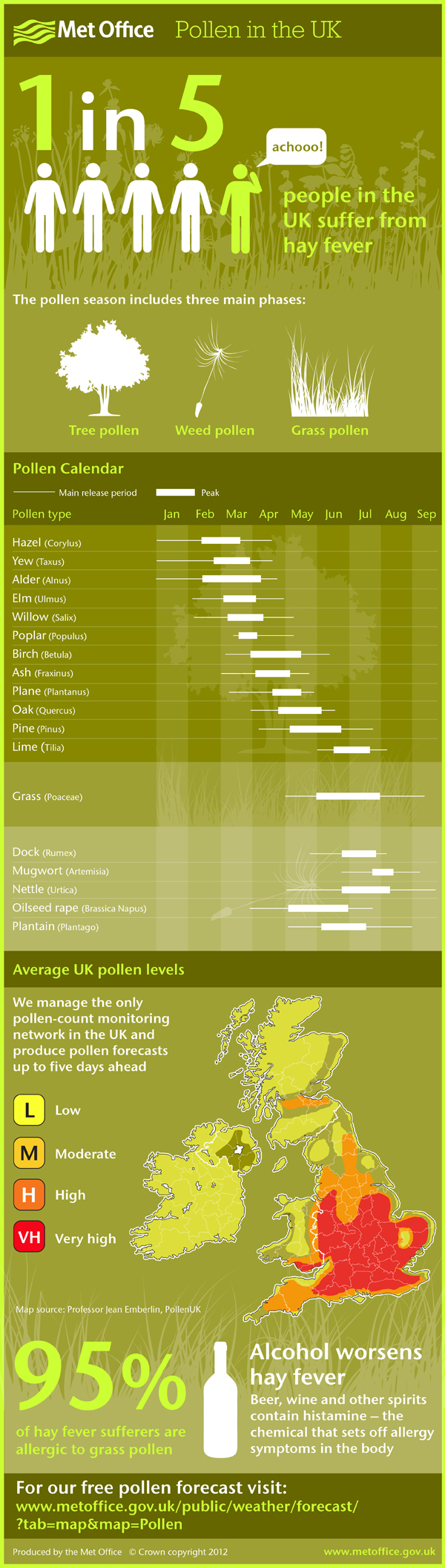 Met Office - Pollen infographic